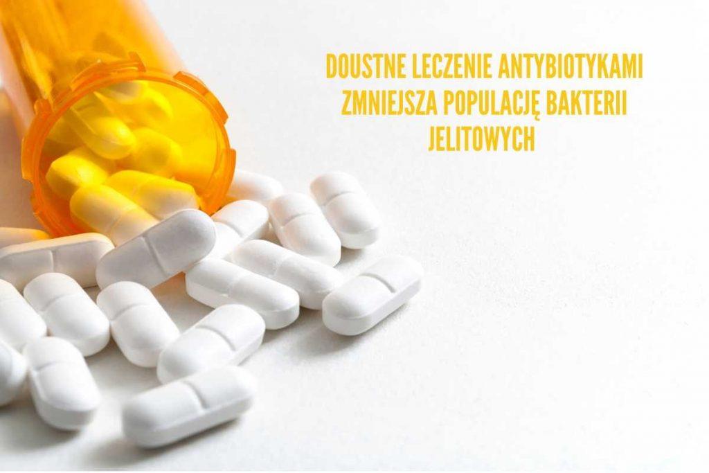 antybiotyki wpływ na stwardnienie rozsiane